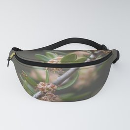 Closeup Mountain Laurel in Utah Fanny Pack