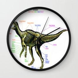 Eoraptor Skeleton Study Wall Clock