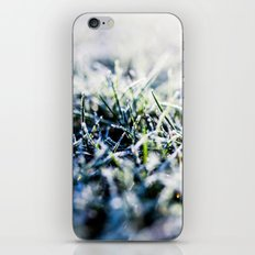 Frosty Morning 1 iPhone & iPod Skin