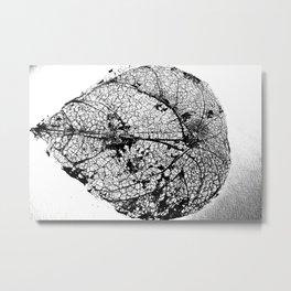Skeleton Leaf Metal Print