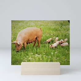 Momma and Piglets in  Meadow by Reay of Light Mini Art Print