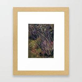 A Beautiful Shrub Framed Art Print