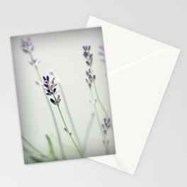 Memories of Provence Stationery Cards