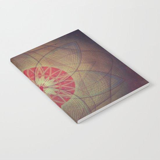 flyrym okkuly Notebook