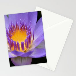My Soul Dressed in Silence Stationery Cards