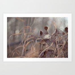Soft Grass & Leaves Art Print