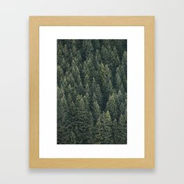 Filled With Evergreen Framed Art Print