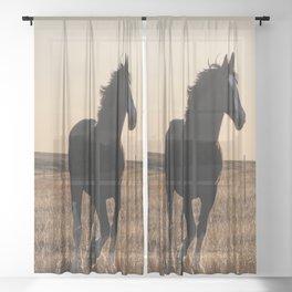 Freya Sheer Curtain