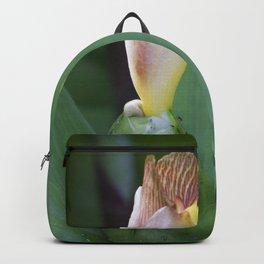 Painted spiral Ginger flower Backpack