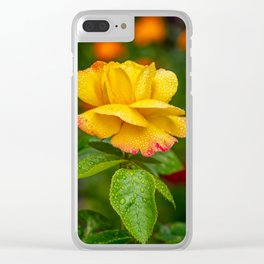 Garden Rose Clear iPhone Case