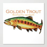 trout Canvas Prints featuring Golden Trout by MoosePaw