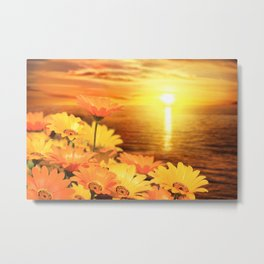 African Daisies on Backdrop of Sea of Cortez at Sunset Metal Print