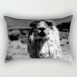 Peru Journey NO2 Rectangular Pillow