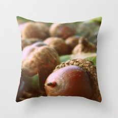 Acorns 2 Throw Pillow