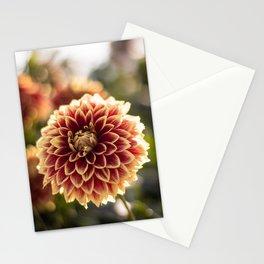 Sun Dahlia Stationery Cards