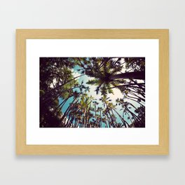 Many Palms. Framed Art Print