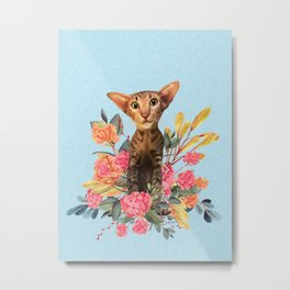 kitty in spring blossom Metal Print