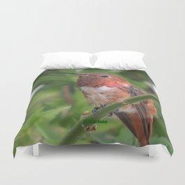 Hummingbird in the Japanese Maple Duvet Cover