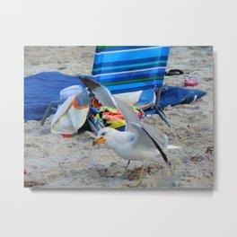 Beach Burglar   Metal Print