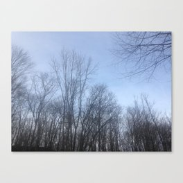 Through the Trees Canvas Print