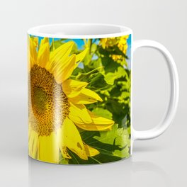 Here Comes the Sun - Giant Sunflower on Sunny Day in Kansas Coffee Mug