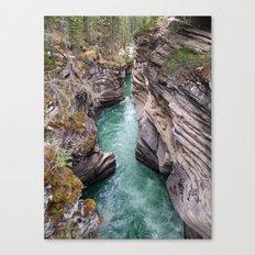 Nature's veins Canvas Print