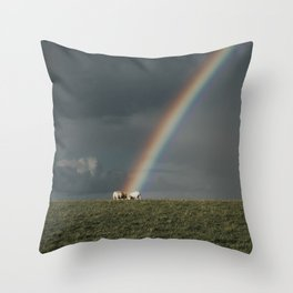 Rainbow II  - Landscape and Nature Photography Throw Pillow