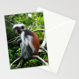Red Colobus Monkey Stationery Cards
