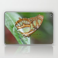 Gorgeous George Butterfly Laptop & iPad Skin