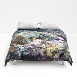 Fish in Sea Anemone Comforters