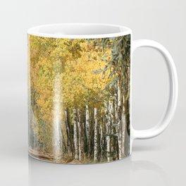 Fall Road, Colorado Coffee Mug