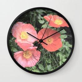 Papaveraceae Wall Clock
