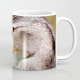 Mallard Portrait2 Coffee Mug
