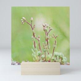 Nature simplicity Mini Art Print