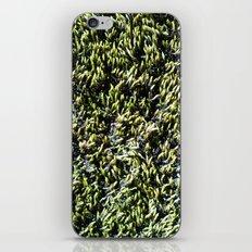 moss texture iPhone & iPod Skin