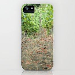 Vineyard Winery iPhone Case