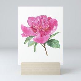 Magenta Pink Peony Flower Mini Art Print