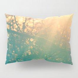 Radiates Light Pillow Sham