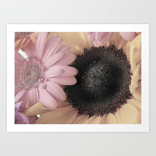 Daisy Sings the Pinks Art Print