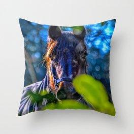 Mylor Walk - Broads Lane Horse Throw Pillow