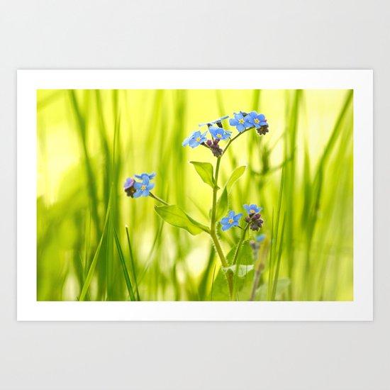 Lovely Morning Meadow Art Print