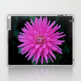 Hey There, Dahlia Laptop & iPad Skin