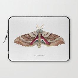 Big Poplar Sphix Laptop Sleeve