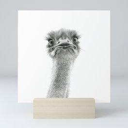 Cute Ostrich SK053 Mini Art Print
