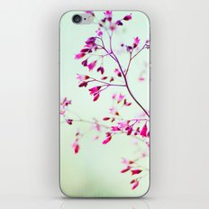 mint iPhone & iPod Skin
