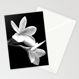 White Flowers Black Background Stationery Cards
