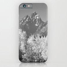 White Trees Slim Case iPhone 6s