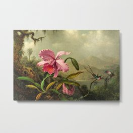 Classical masterpiece Orchids And Hummingbirds by Martin Johnson Heade Metal Print