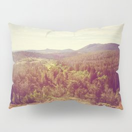 The Bigger Picture Pillow Sham