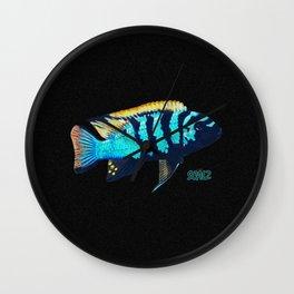 Blue Sentinel Cichlid Wall Clock